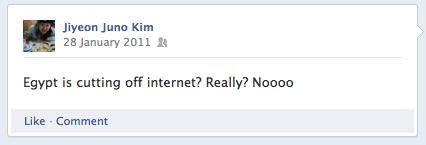 Internet blackout Egypt Revolution