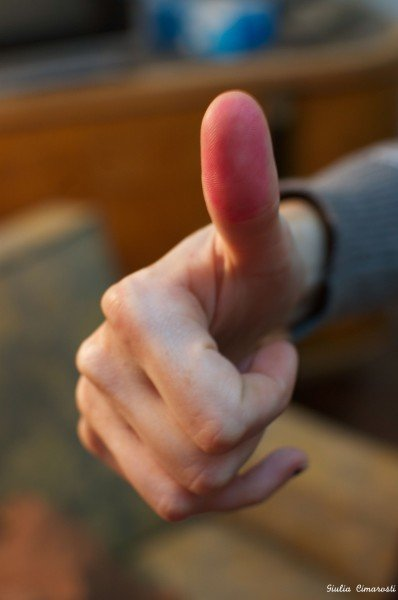 Egyptian first democratic vote after the Revolution - the Referendum