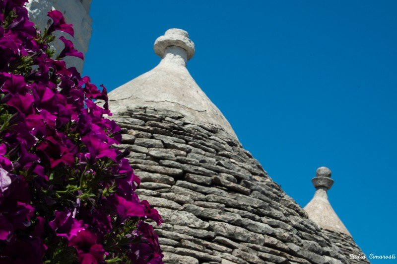 Trulli roofs with beautiful flowers