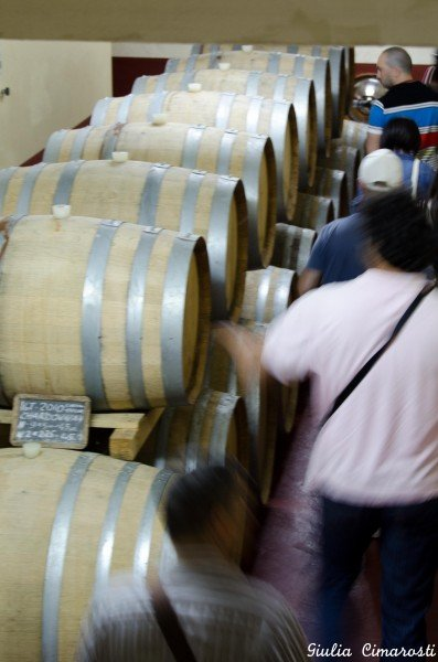 The tour of the cellars