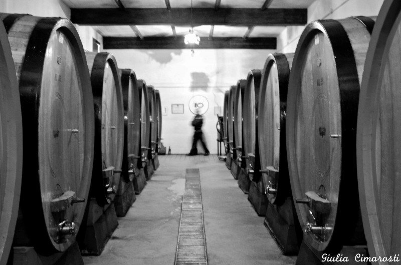 Barrels in black and white