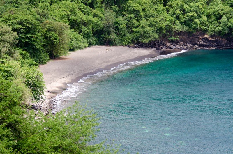 Savage beach on St Vincent Island, with the typical black sand of volcanic origin