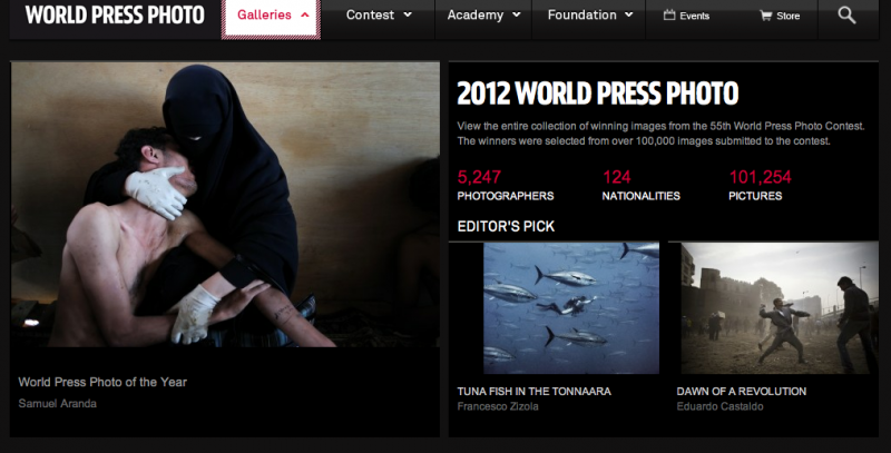 World Press Photo 2012 website
