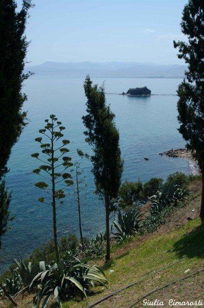 The sea in Polis