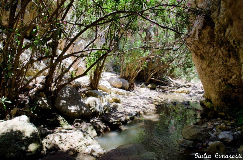 The hike at the Avakas Gorge