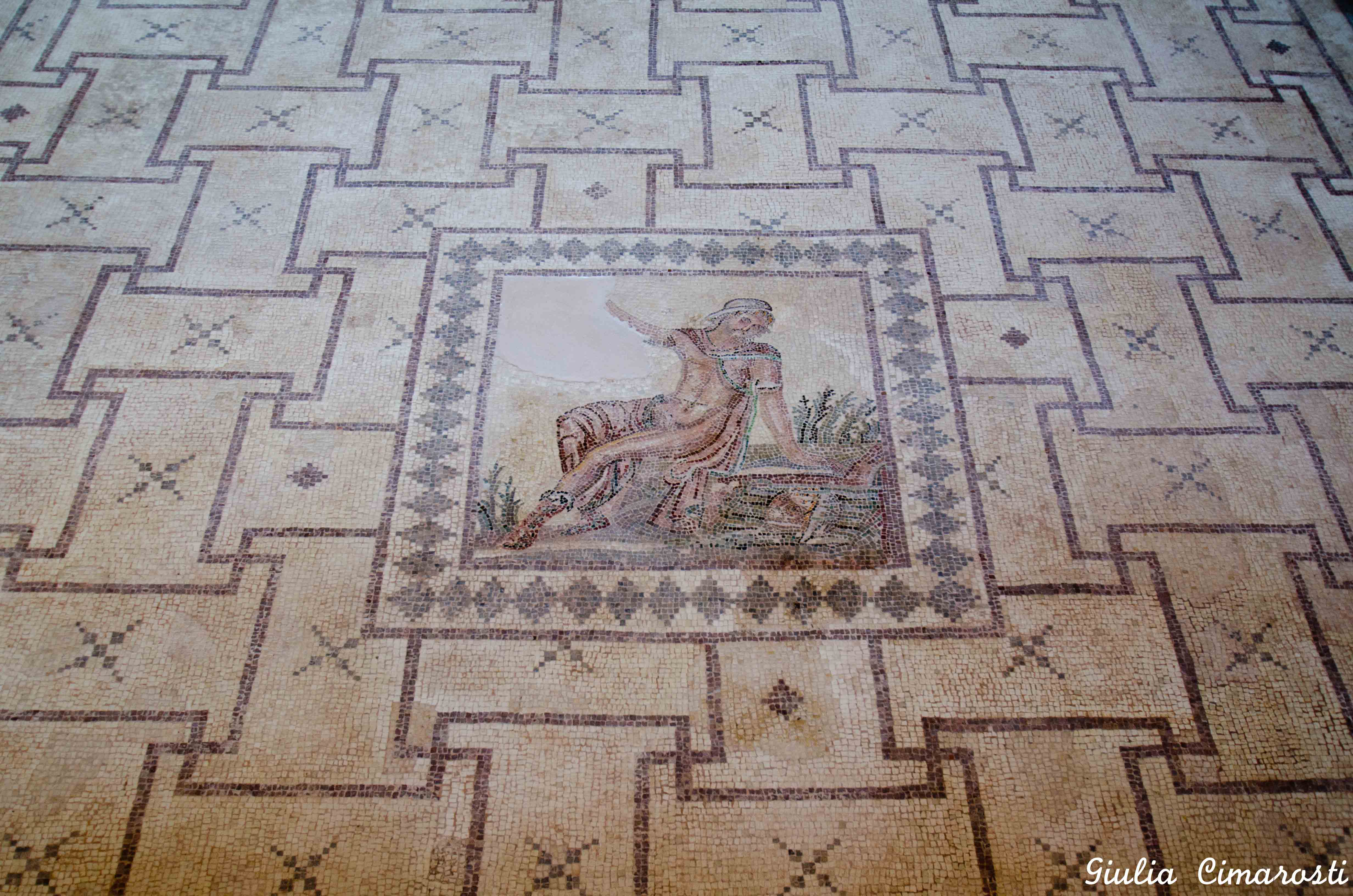 the mosaics of pafos in com by giulia narcissus