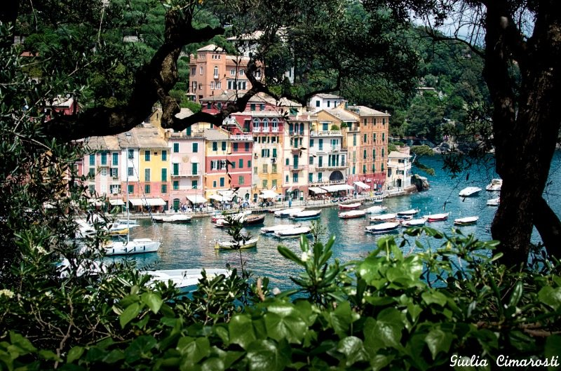 One more view of Portofino