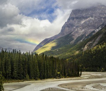 Canadian Rockies by bus with Greyhound