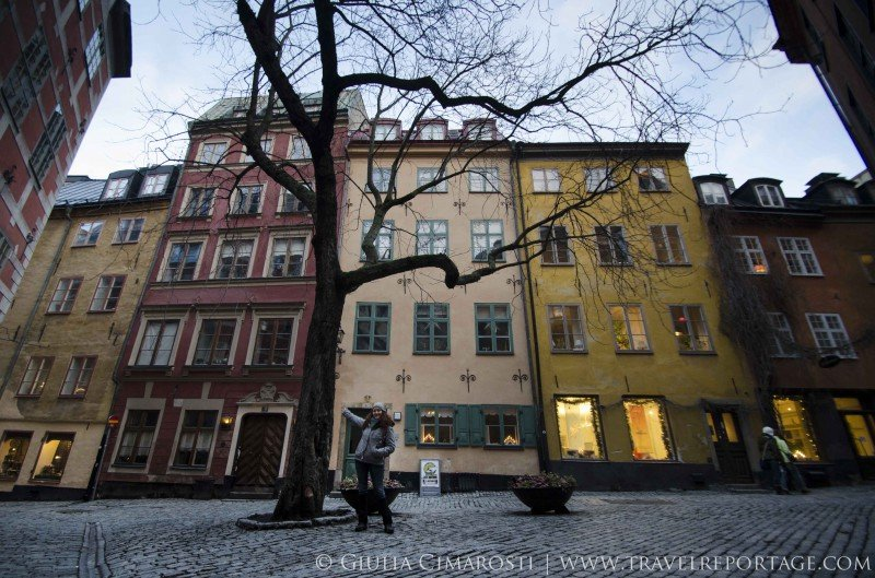 Me and my tree friend in Gamla Stan, Stockholm