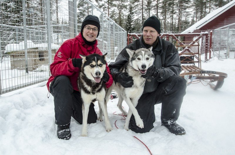 Birgitta and Mikael Sandin, the owners of the dogs