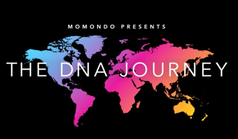 The DNA Journey: I took a DNA test and found about my origins