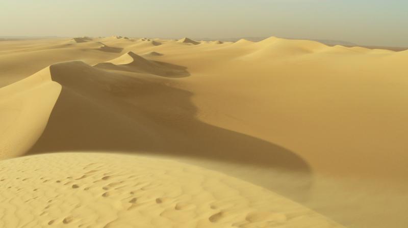 Sand dunes, Egyptian Western Desert, 2007