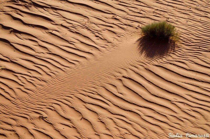 What wind can do... Wadi Rum Jordan