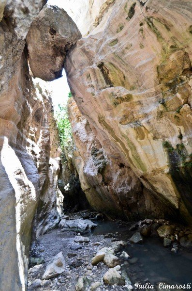 The Avakas Gorge