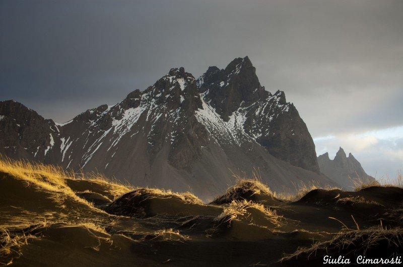 Black sand dunes and golden grass... I loved it