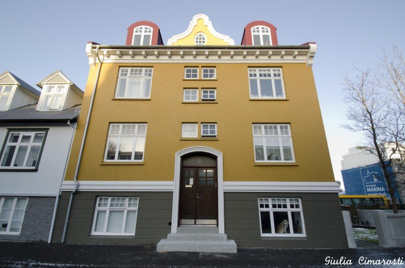 The first building where I slept in Reykjavik. Cuddly dog Rosa waiting for me