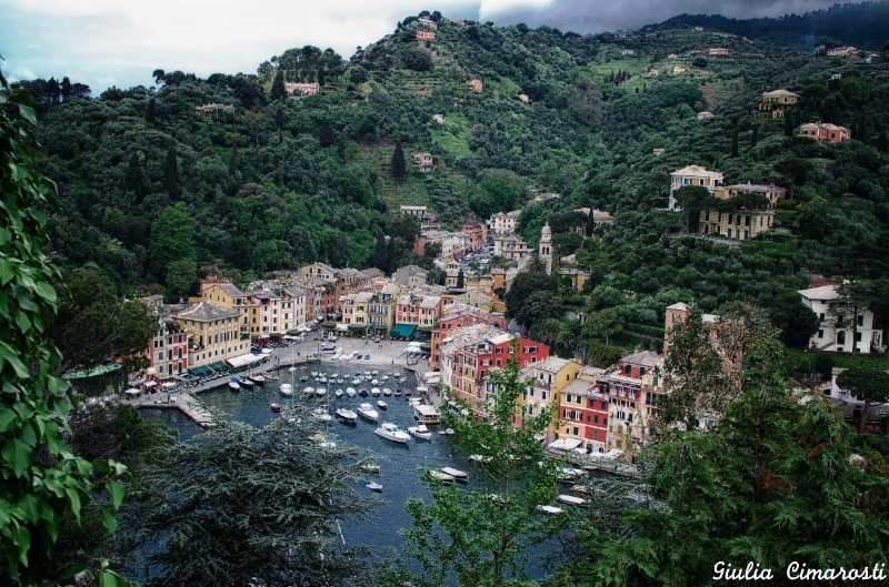 Portofino and the lush vegetation