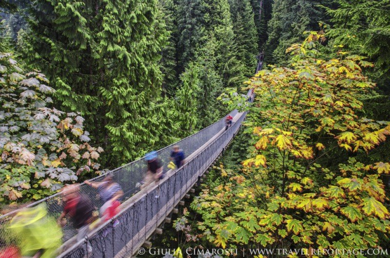 The Capilano Suspension Bridge