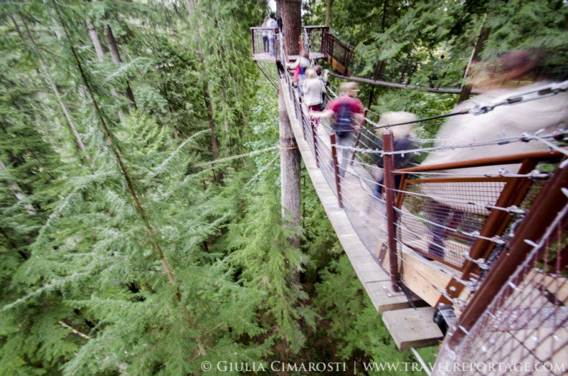 The bridges on top of the trees at the Capilano Park... awesome