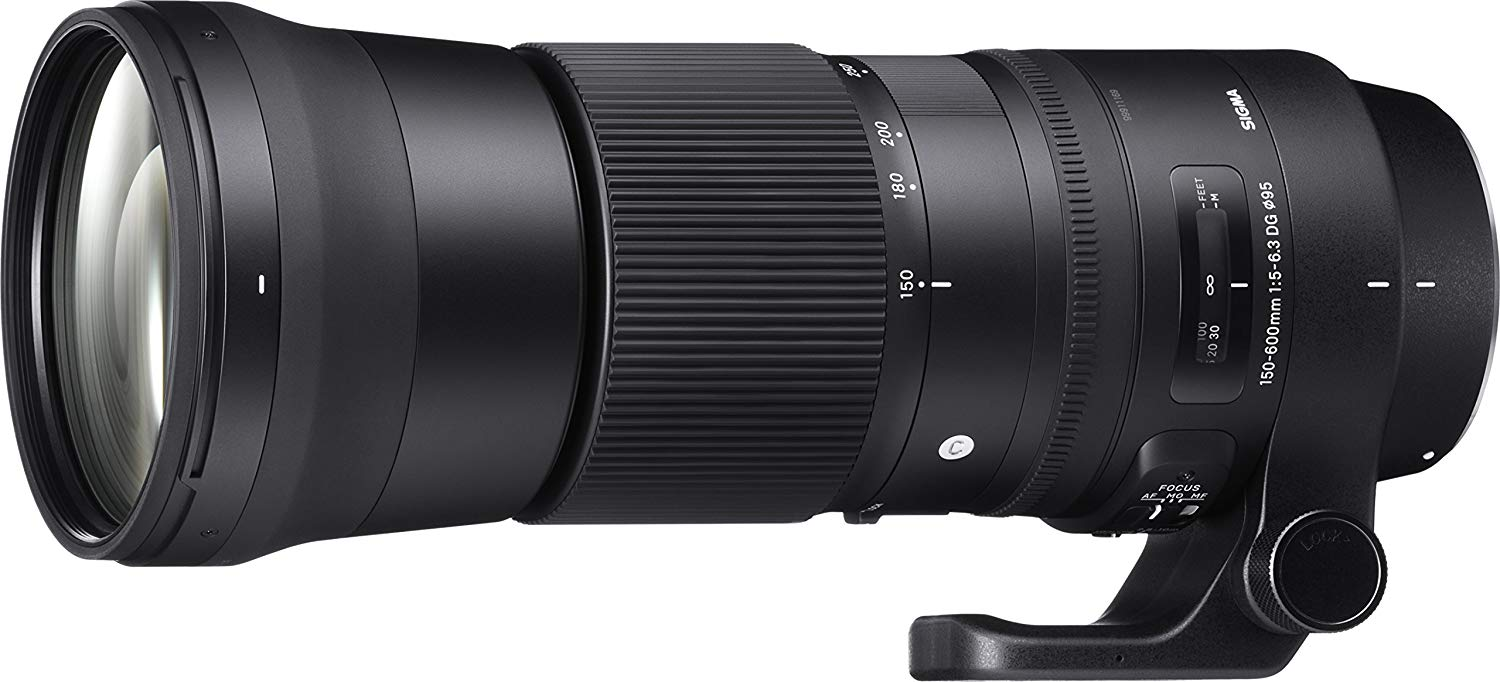 Travel Photography Gear: Sigma 5,0-6,3/150-600 DG OS HSM Contemporary
